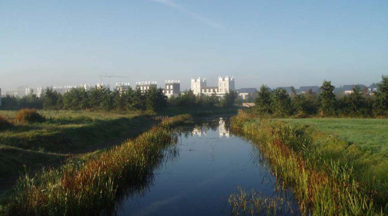 Zomeravond wandeling door Skoatterwâld / Oranjewoud