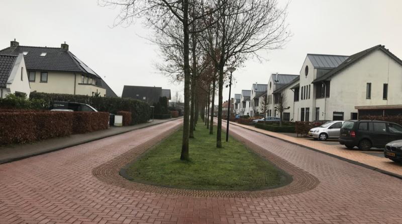Gemeente wijzigt de Algemene Plaatselijke Verordening (APV): parkeren in het groen in Skoatterwâld mag niet meer